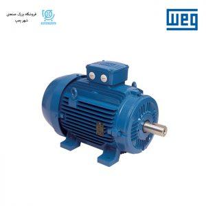 الکتروموتور آسنکرون WEG سری IE4
